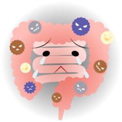 断食により腸内環境が悪化する