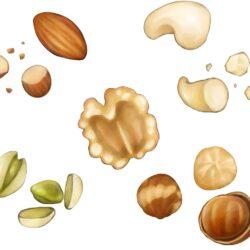 良質な脂肪酸を含む食べ物