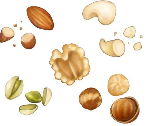 免疫力アップに役立つ脂肪酸を含む食材